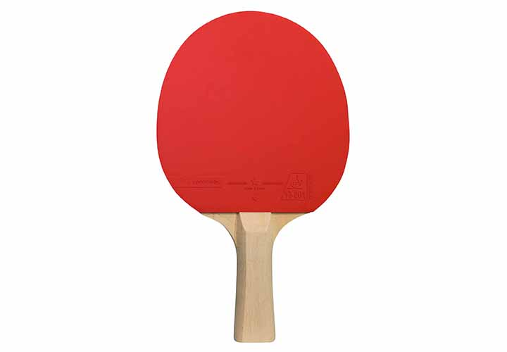 indoor-ping-pong-racket-cornilleau-sport-100-back-441000