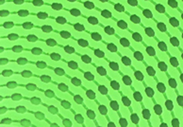 raquette-cornilleau-softbat-softskin zoom